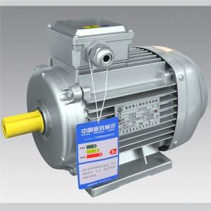Y2/YE2 square shape series  IEC motor  LXIEC001