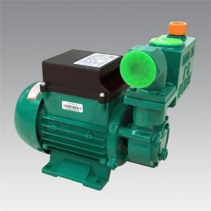 DB-B series  Household cast iron pump  LXZT014