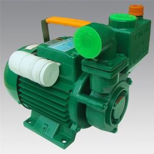 ZDB-B series  Household cast iron pump  LXZT015