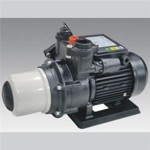 DAH series Household cast iron pump  LXZT019