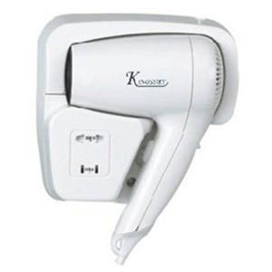 JXG-2000E  Hair Drye