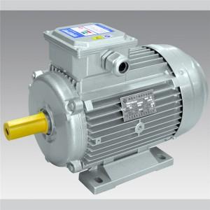 Y2/YE2 round shape series  IEC motor  LXIEC002