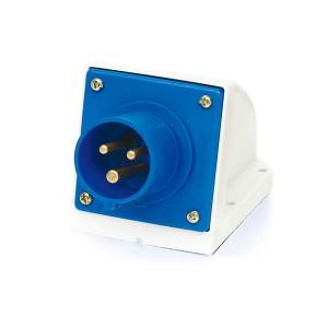 2P+E Industrial Plug